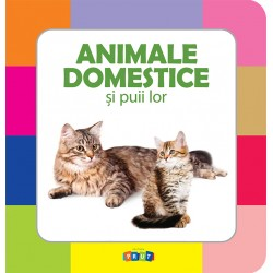 Animale domestice și puii lor